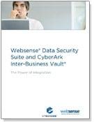WP-Websense-icon